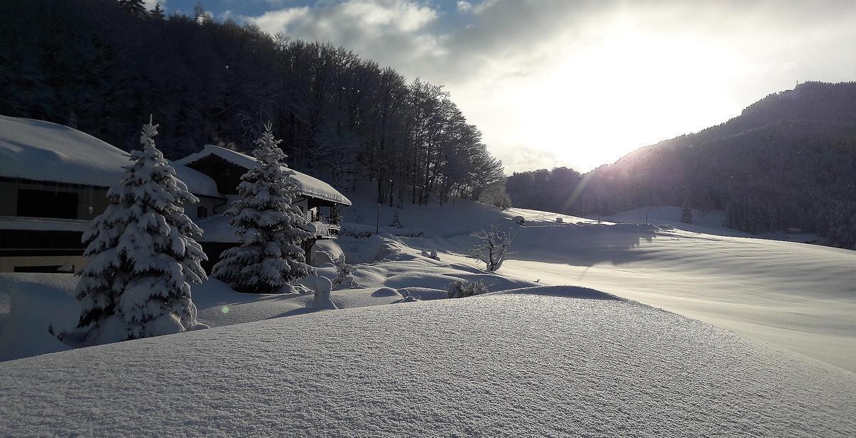 Gaestehasus-Grechinglehen_winter.jpg