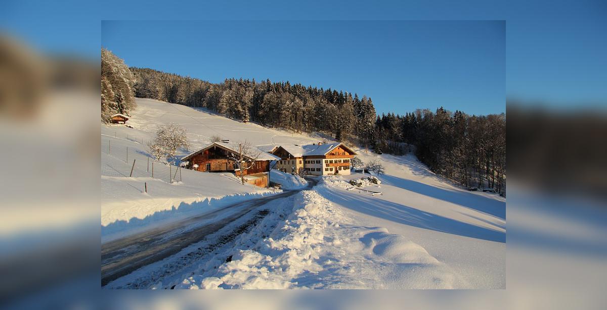 Ferienbauernhof-Freynend_Winter_2.jpg