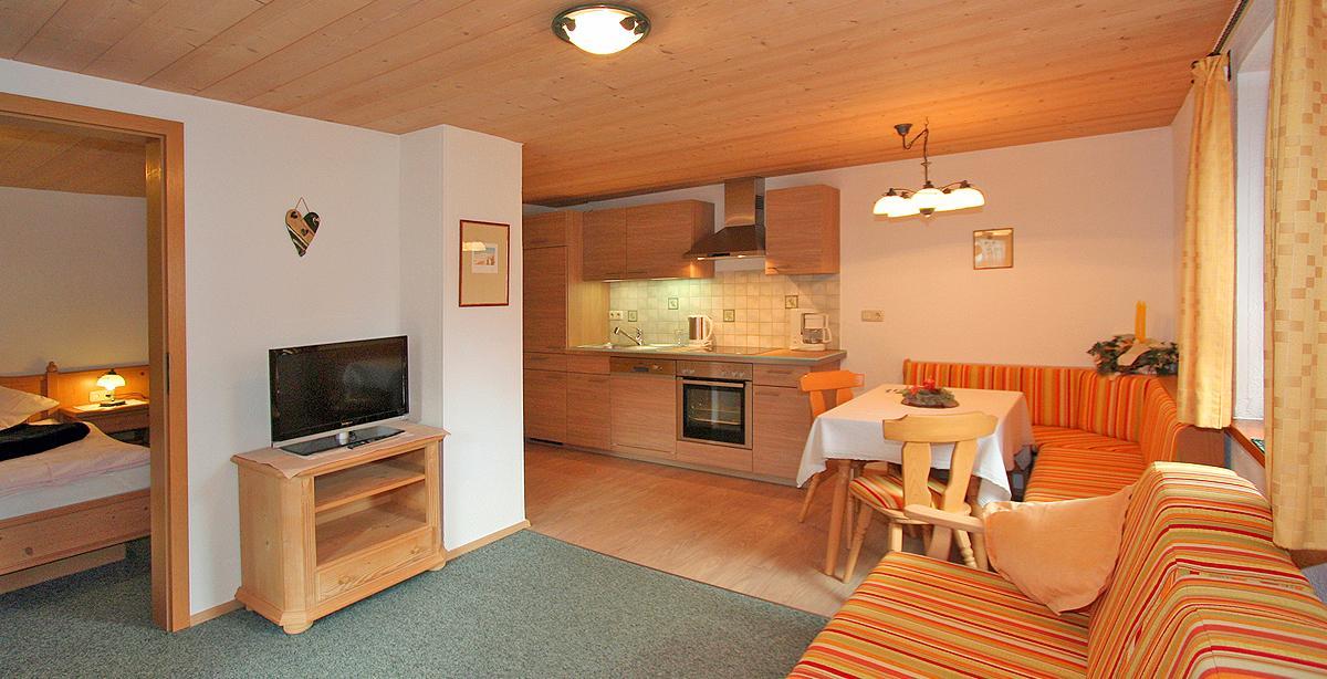 Apartment_Gruenstein_Wohnkueche.JPG