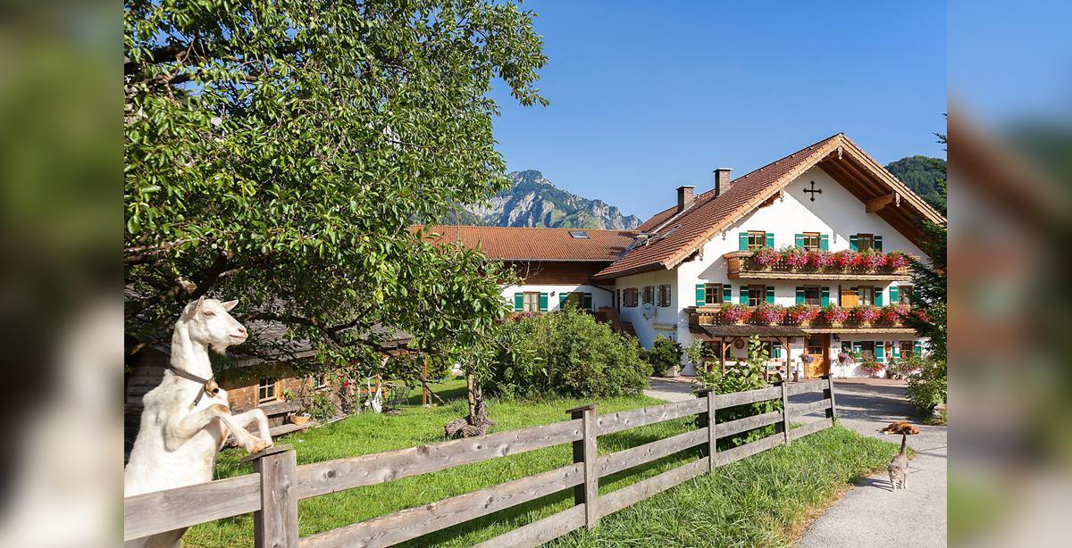 Urlaub_am_Bauernhof.jpg